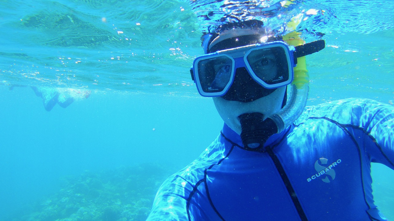 snorkeling the great barrier reef with a stinger suit